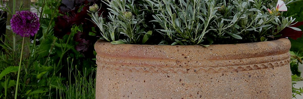 Clifton Nurseries - Old Ironstone Cylinder Planter