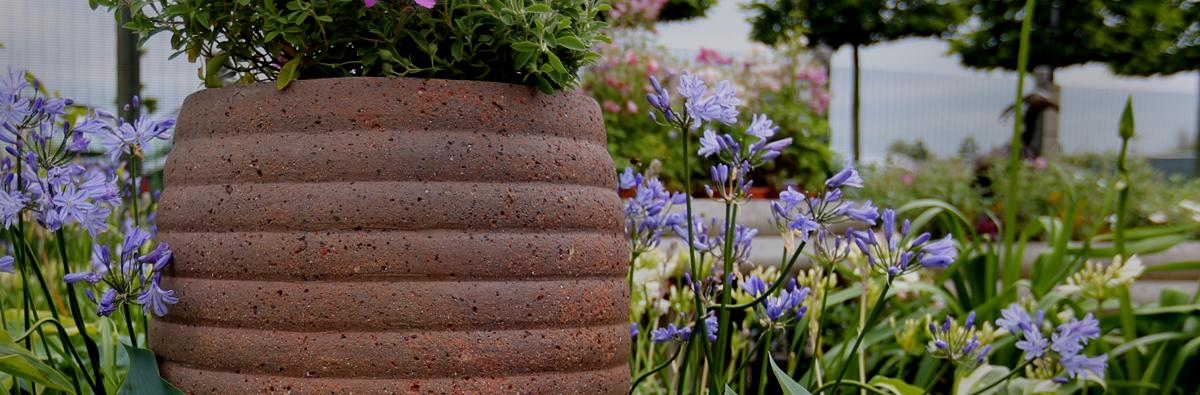 Clifton Nurseries - Old Ironstone Old Jar - Banner