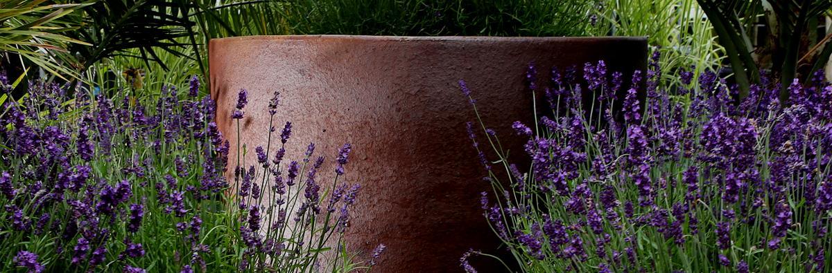Clifton Nurseries Pot Company Ironstone Toscano Pot - Banner