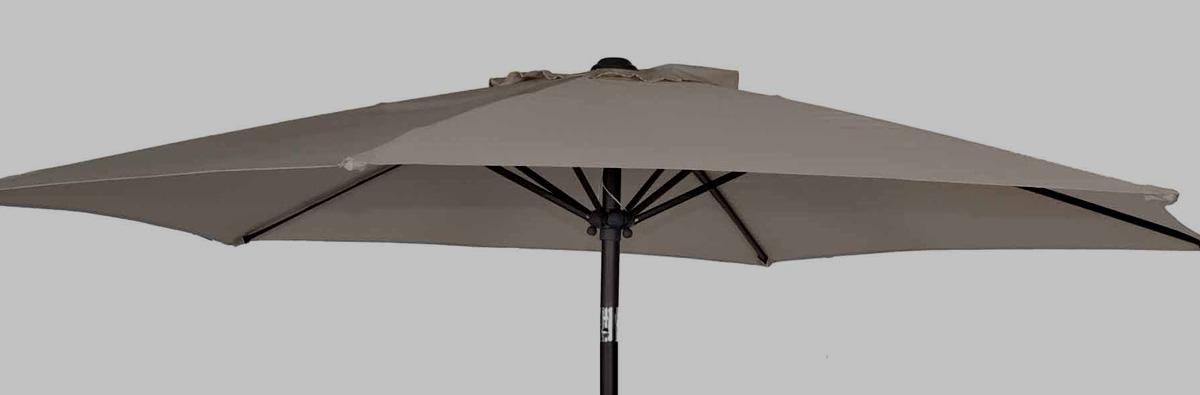 Clifton Nurseries Alexander Rose Parasol 2.5m