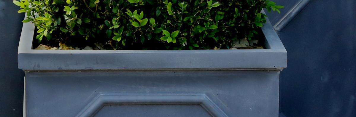 Clifton Nurseries Fibrestone Chelsea Cylinder Pot Black - Banner