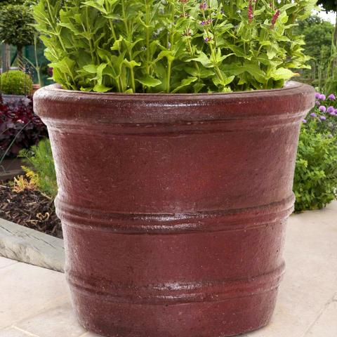 Clifton Nurseries Pot Company Duato Ironstone Planter