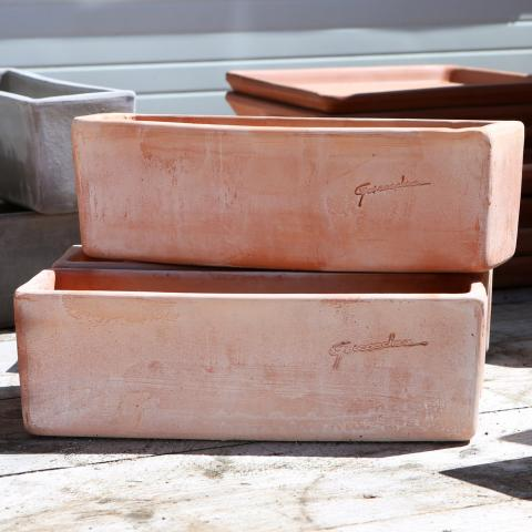 Clifton Nurseries Goicoechea Small Rectangular Planter