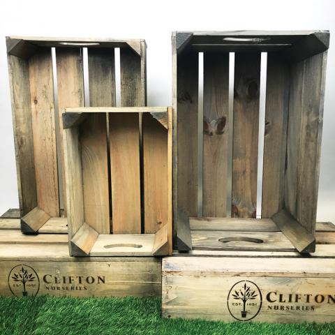 Clifton Nurseries Branded Crates