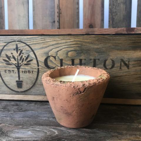 Clifton Nurseries Citronella scented Small Candle Pot
