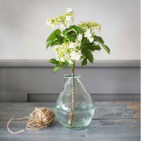 Clifton Nurseries Trading Vase