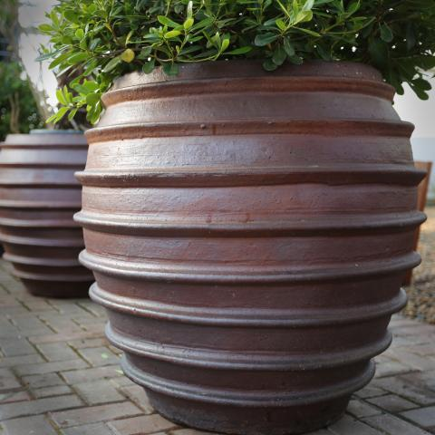 Clifton Nurseries ironstone irun pot 75cm