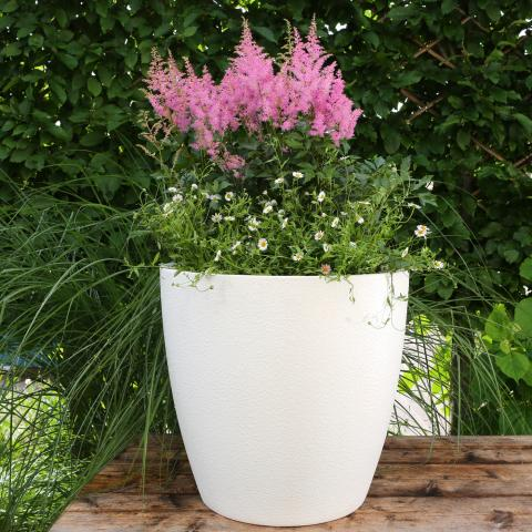 Clifton Nurseries - Living Green Cirkik Pot Textured Brilliant White 52cm