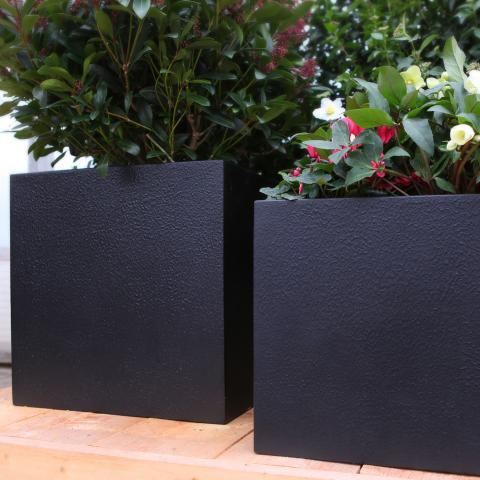 Clifton Nurseries living green cube black textured planter