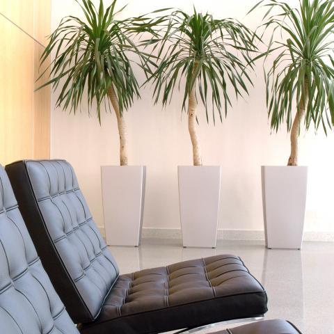 Clifton Nurseries living green kubik planter textured white