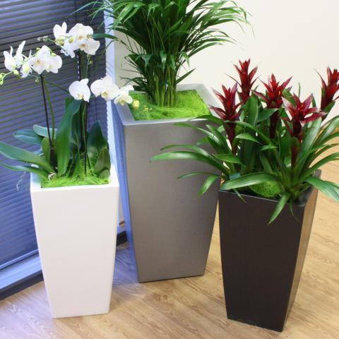 Clifton Nurseries Living Green kubik planter lightweight textured black 34cm