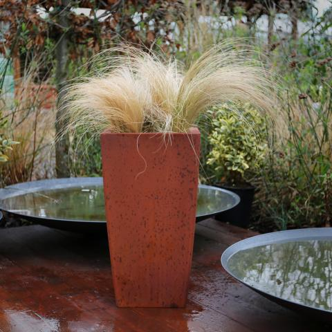 Clifton Nurseries living green kubik rust 34cm
