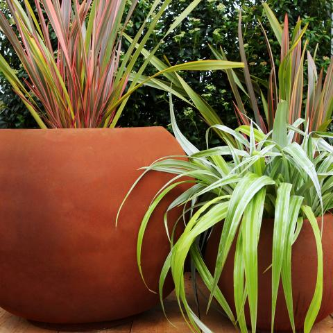Clifton Nurseries living green sphere planter natural rust