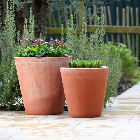 clifton nurseries terracini long tom 35cm 43cm garden pot