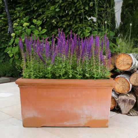 Clifton Nurseries Pot Company Fresco Trough