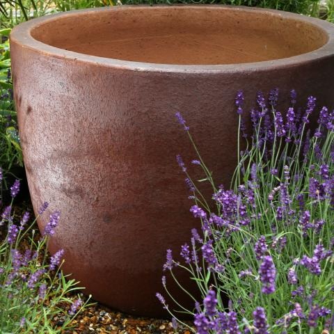 Clifton Nurseries - Pot Company Toscano Pot