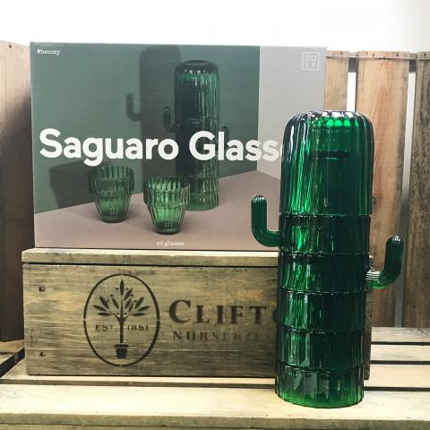 Clifton Nurseries Saguaro Glasses Set