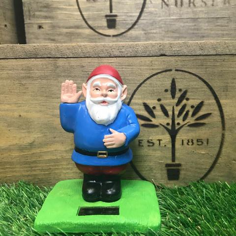 Clifton Nurseries Solar Gnome in Blue