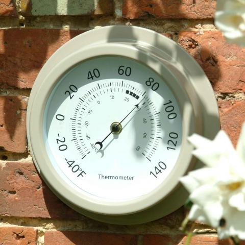Clifton Nurseries Thermometer