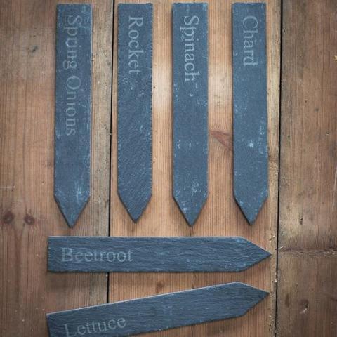 Clifton Nurseries Slate Vegetable Markers