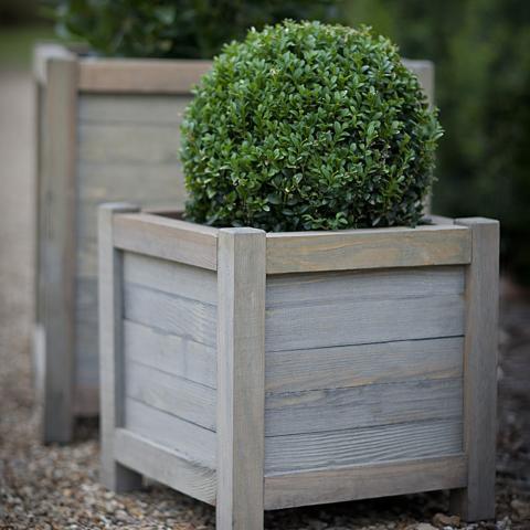 Clifton Nurseries trading spruce wooden garden planter